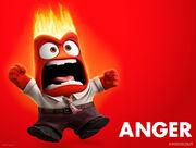Inside out anger standard