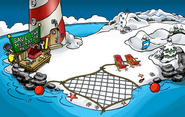 Save the Migrator Project Beach 3