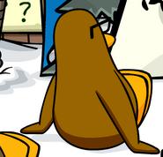 Backwardsdancingpenguin
