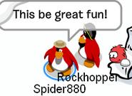 Spider rh yarr