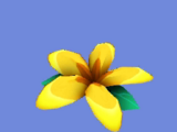Flor Selvática (ICP)