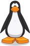 Pinguino negro-0
