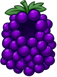 GrapeBunchCostume