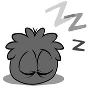 Black Puffle Sleeping