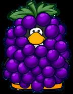 Grape Bunch Costume Player Card