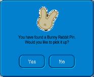 Bunny Rabbit Pin Pick Up