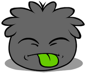 Black Puffle Sticking Tongue Out