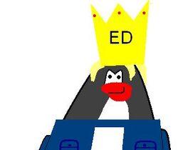 EDFanKing