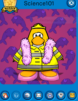pookie impersonators club penguin pookie wiki fandom