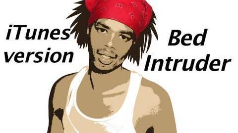 Bed Intruder Song
