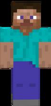 Steve Minecraft 28