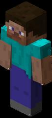 Steve Minecraft 22
