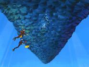 Fish entrance