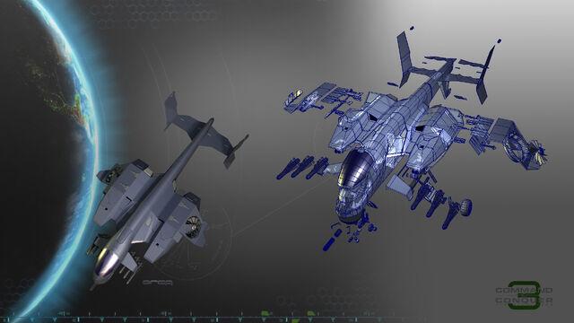 File:Orca1.jpg