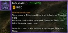 CNCKW Infestation info