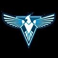 RAM Logo Allies.png