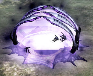 Warping in an Eradicator Hexapod