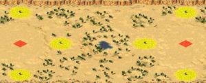 Dune Patrol