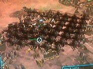 Hammerhead Horde