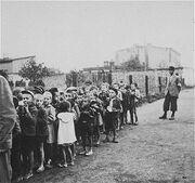 Children rounded up for deportation