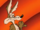 Wile E. Coyote (Looney Tunes).png