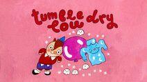 TumbleDryLow Titlecard
