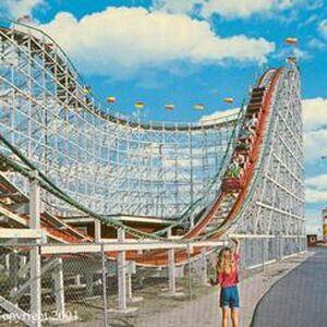 Swamp Fox Roller Coaster Wiki Fandom