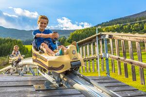 Brandauer-mountain-coaster