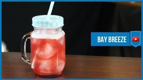 Bay Breeze Cocktail - How to make Video Cocktail Recipe by Drink Lab (Popular)