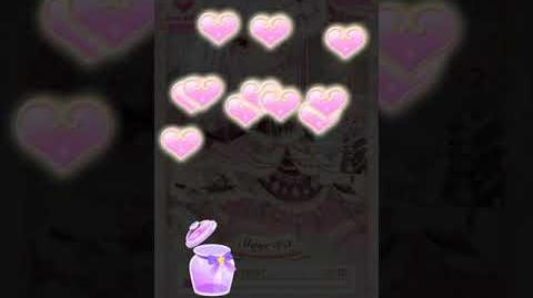 【CocoPPa Play】Top Brand Double Heart Bottle