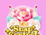 Snap Contest 8