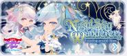 Night Sky Wanderer Banner