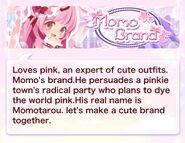 (Summary) Top Brand - Momo