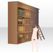 (Back Accessories) Bookshelf in Mysterious Library ver.A brown