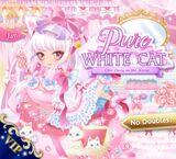 Pure White♡Cat