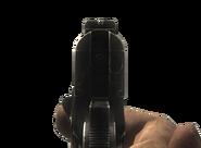 WaW M1911 Mira