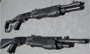 Variantes SPAS-12