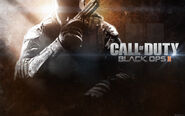 Call of duty black ops 2 2013 game-wide