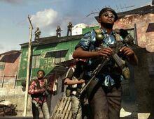 Milicia Brasileña