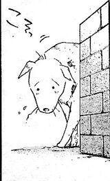 Pies manga
