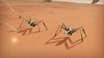 Two Tarantulas seen in the Desert Sector in Evolution