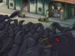 The Lyoko Warriors are looking at the possessed crows