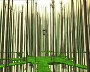 Forest replyka
