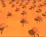 Muitoscaranguejos