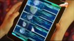 Lyoko Warriors avatar Evo24