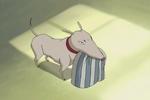 7 jeremie dogsits