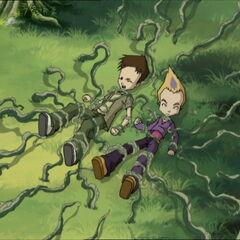 Напад корења.