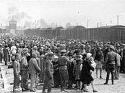 220px-Selection Birkenau ramp