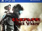 Everwar: Black Widow