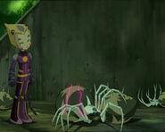 Odd arañas